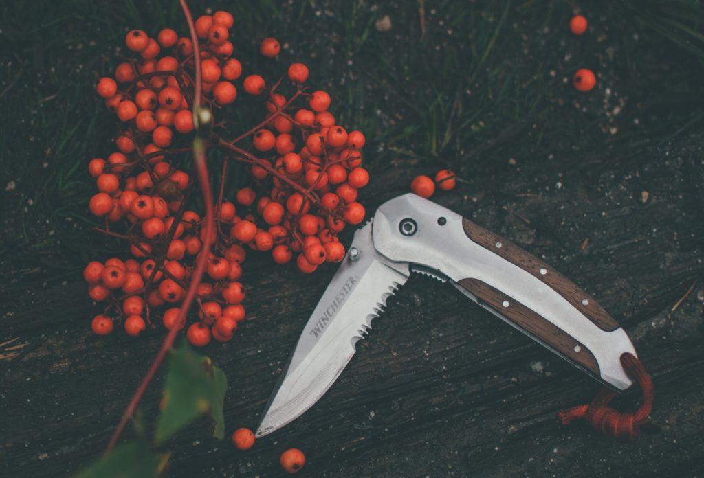 couteau suisse, baies, accessoires de cuisine équipe cuisine